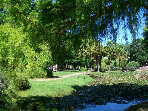 Wynberg-Park-1